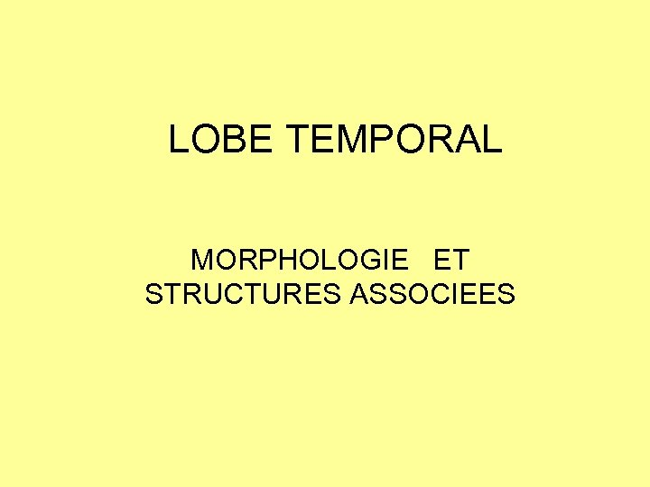 LOBE TEMPORAL MORPHOLOGIE ET STRUCTURES ASSOCIEES