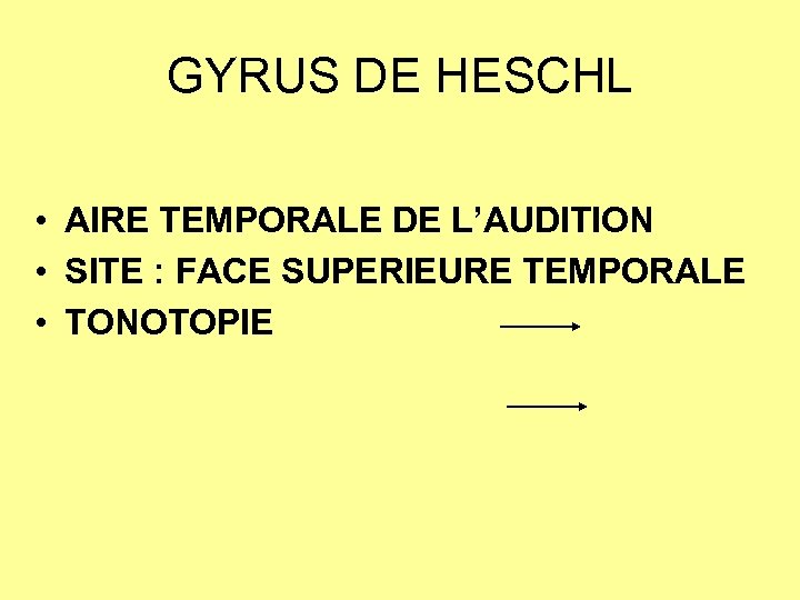 GYRUS DE HESCHL • AIRE TEMPORALE DE L'AUDITION • SITE : FACE SUPERIEURE TEMPORALE