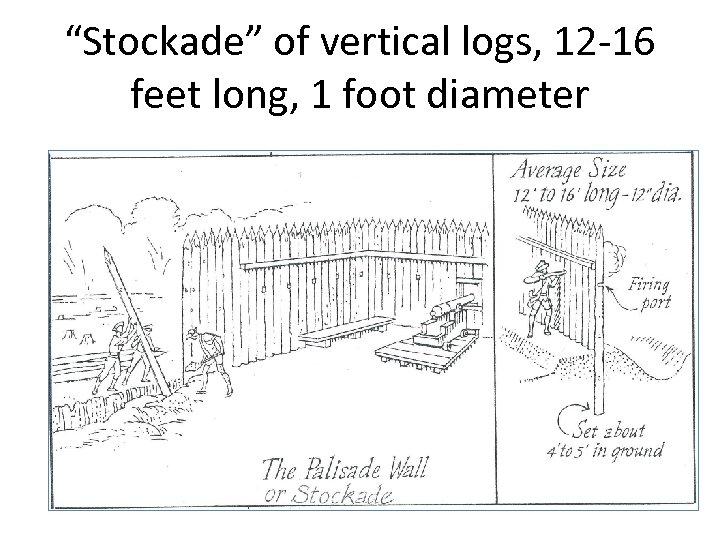 """""""Stockade"""" of vertical logs, 12 -16 feet long, 1 foot diameter"""