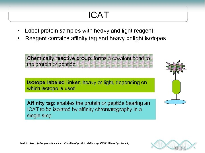 ICAT • Label protein samples with heavy and light reagent • Reagent contains affinity