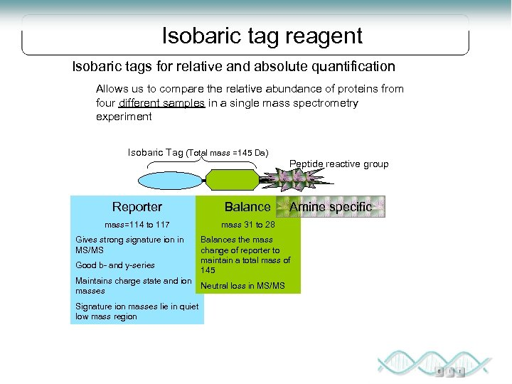 Isobaric tag reagent Isobaric tags for relative and absolute quantification Allows us to compare