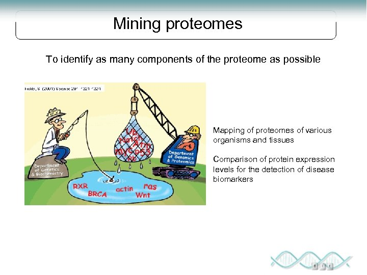 Mining proteomes To identify as many components of the proteome as possible Mapping of