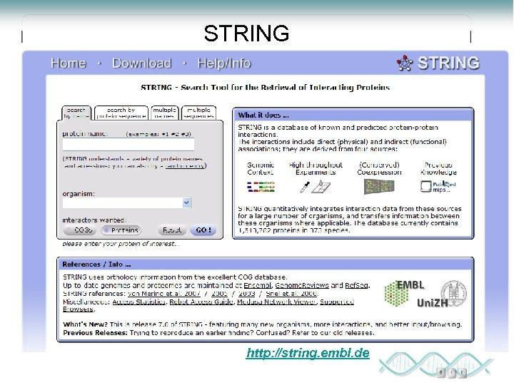 STRING http: //string. embl. de