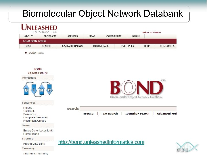 Biomolecular Object Network Databank BOND http: //bond. unleashedinformatics. com