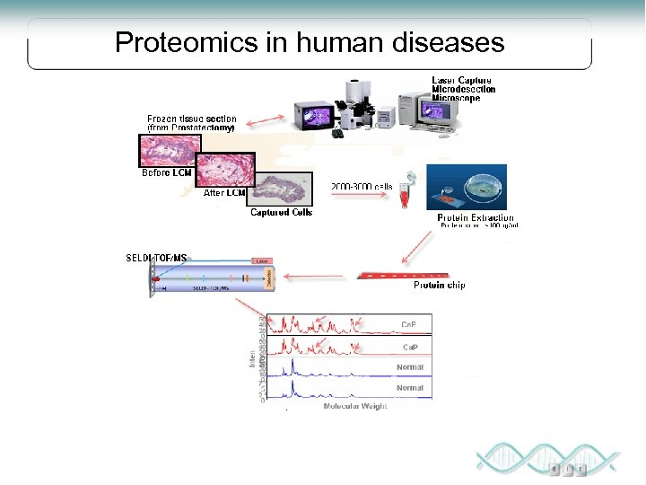 Proteomics in human diseases