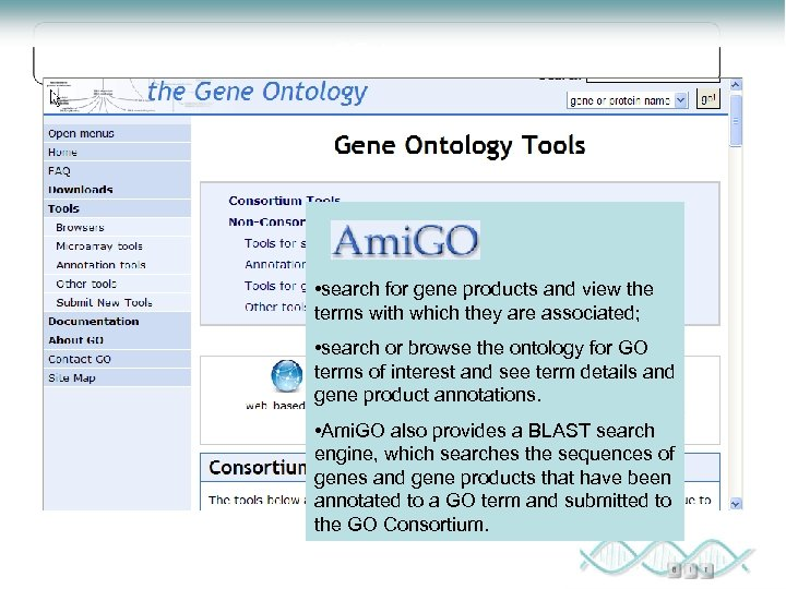 GO tools • search for gene products and view the terms with which they