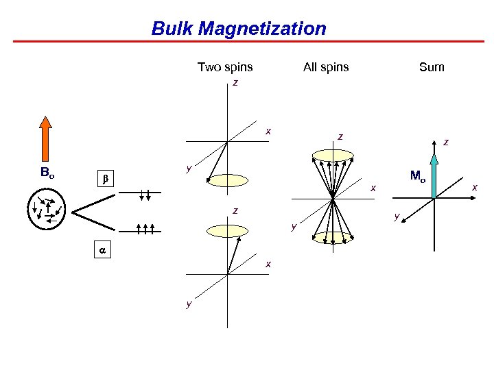Bulk Magnetization Two spins All spins Sum z x Bo b z z y