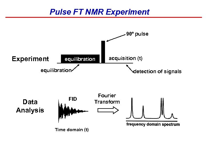 Pulse FT NMR Experiment 90º pulse Experiment equilibration acquisition (t) equilibration Data Analysis FID