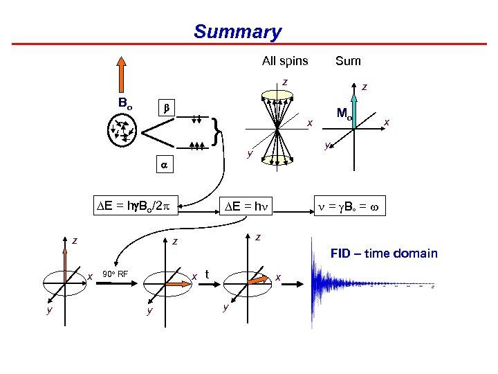 Summary All spins Sum z Bo b } z y y = B =