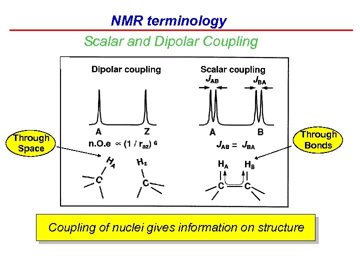 NMR terminology Scalar and Dipolar Coupling Through Space Through Bonds Coupling of nuclei gives