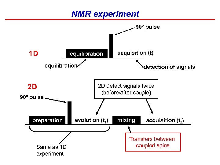 NMR experiment 90º pulse 1 D equilibration acquisition (t) equilibration 2 D 90º pulse