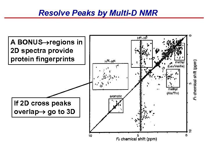 Resolve Peaks by Multi-D NMR A BONUS regions in 2 D spectra provide protein