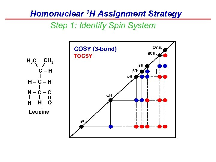 Homonuclear 1 H Assignment Strategy Step 1: Identify Spin System 'CH 3 COSY (3