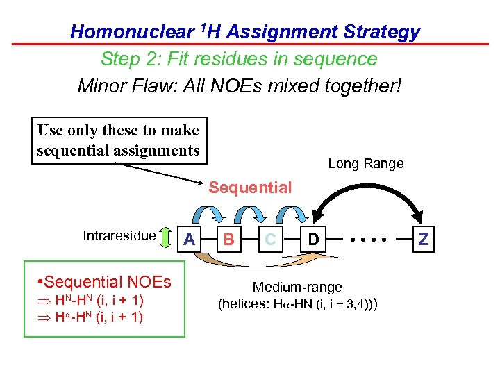 Homonuclear 1 H Assignment Strategy Step 2: Fit residues in sequence Minor Flaw: All