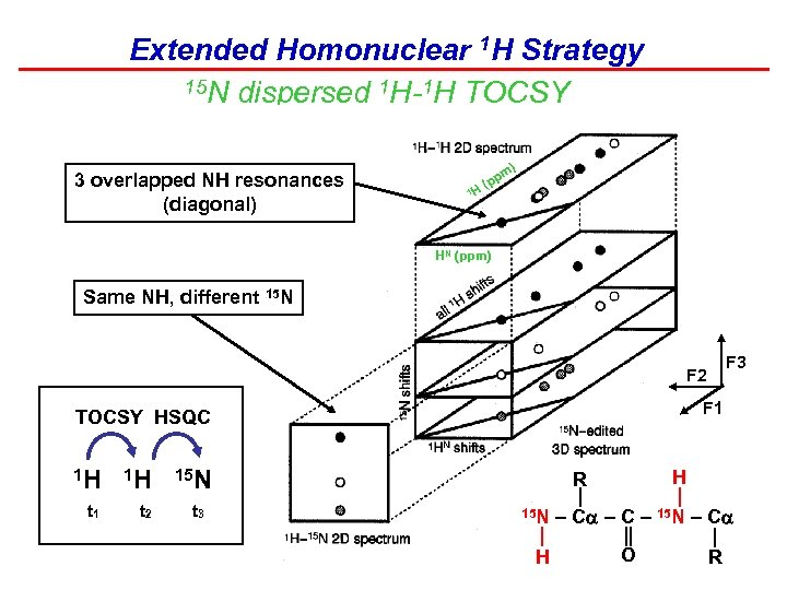 Extended Homonuclear 1 H Strategy 15 N dispersed 1 H-1 H TOCSY 3 overlapped