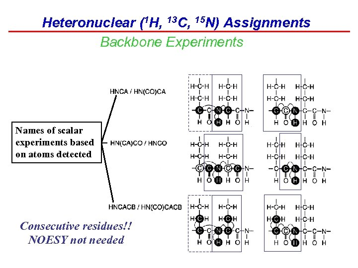 Heteronuclear (1 H, 13 C, 15 N) Assignments Backbone Experiments Names of scalar experiments