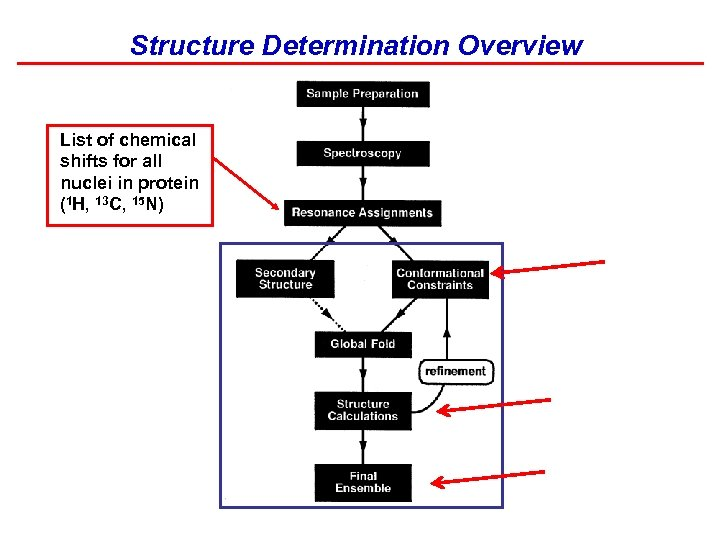 Structure Determination Overview List of chemical shifts for all nuclei in protein (1 H,