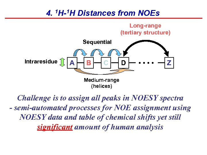 4. 1 H-1 H Distances from NOEs Long-range (tertiary structure) Sequential Intraresidue A B