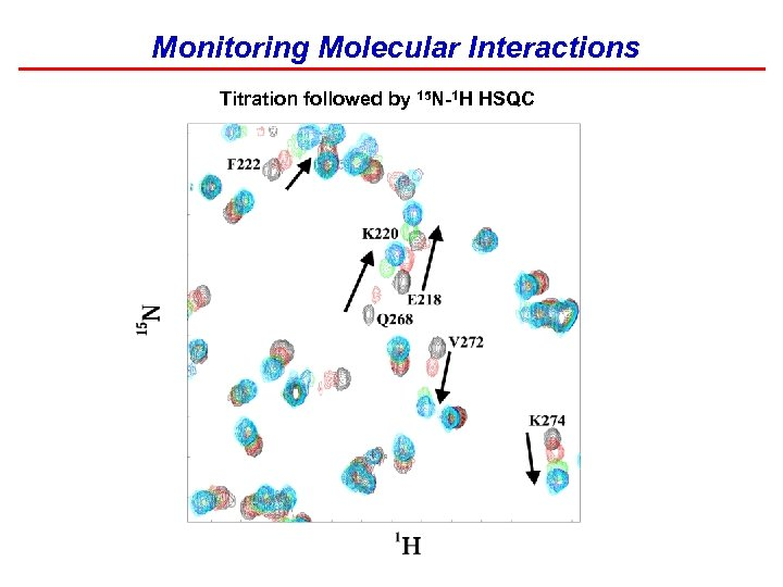 Monitoring Molecular Interactions Titration followed by 15 N-1 H HSQC