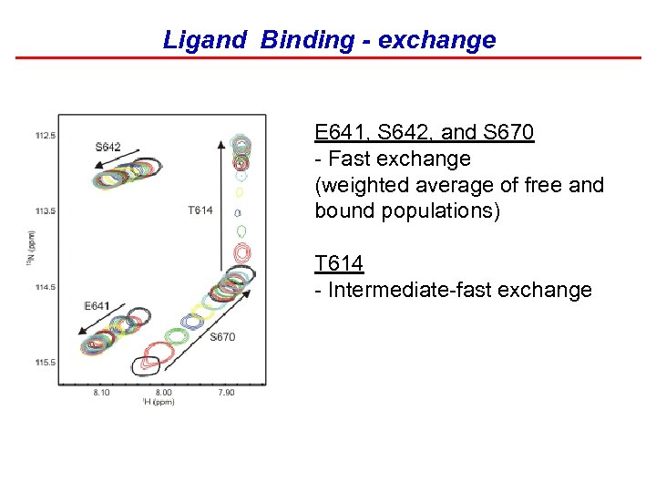 Ligand Binding - exchange E 641, S 642, and S 670 - Fast exchange