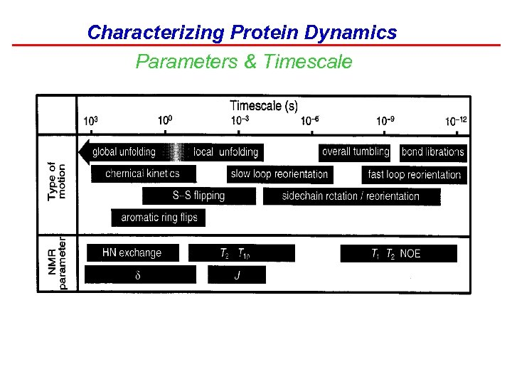 Characterizing Protein Dynamics Parameters & Timescale