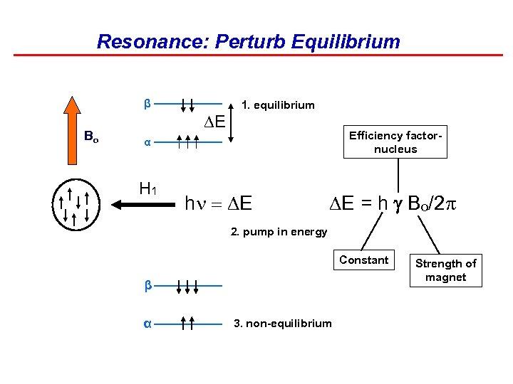 Resonance: Perturb Equilibrium β Bo DE 1. equilibrium Efficiency factornucleus α H 1 h