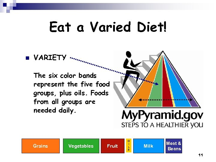 Eat a Varied Diet! n VARIETY The six color bands represent the five food