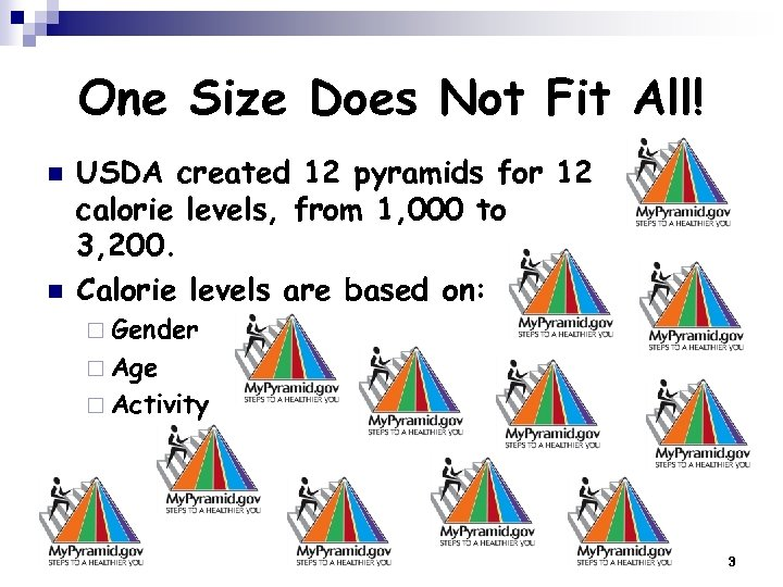 One Size Does Not Fit All! n n USDA created 12 pyramids for 12