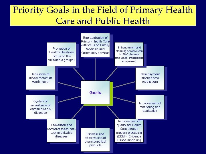 Priority Goals in the Field of Primary Health Care and Public Health Promotion of