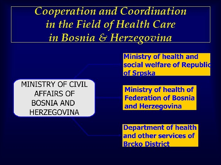 Cooperation and Coordination in the Field of Health Care in Bosnia & Herzegovina
