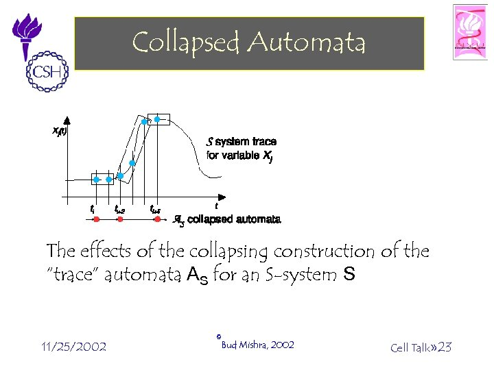 """Collapsed Automata The effects of the collapsing construction of the """"trace"""" automata AS for"""