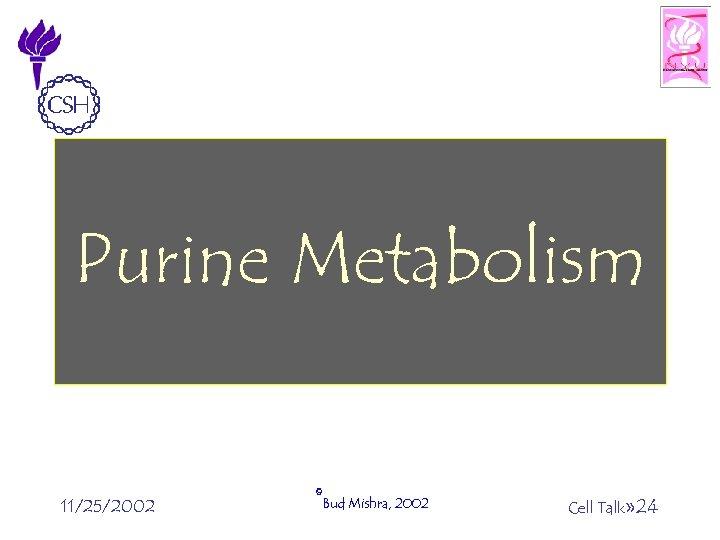 Purine Metabolism 11/25/2002 ©Bud Mishra, 2002 Cell Talk» 24