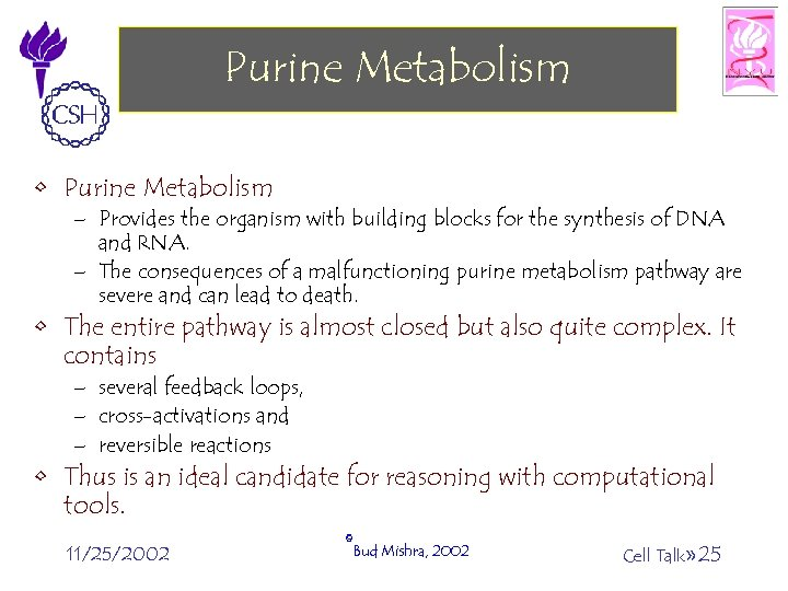 Purine Metabolism • Purine Metabolism – Provides the organism with building blocks for the