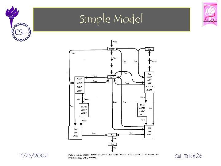 Simple Model 11/25/2002 ©Bud Mishra, 2002 Cell Talk» 26