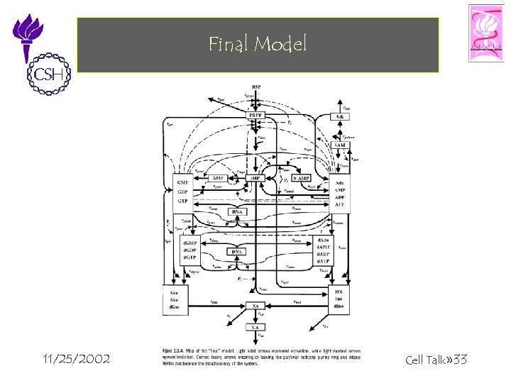 Final Model 11/25/2002 ©Bud Mishra, 2002 Cell Talk» 33