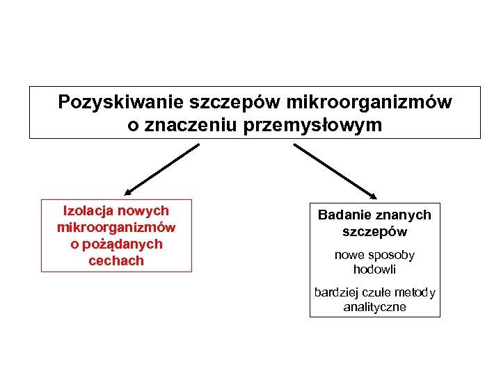 Pozyskiwanie szczepów mikroorganizmów o znaczeniu przemysłowym Izolacja nowych mikroorganizmów o pożądanych cechach Badanie znanych