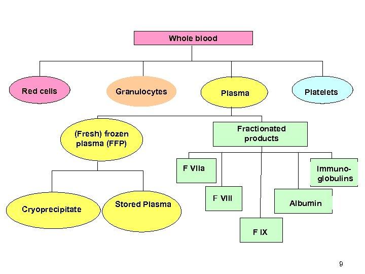 Whole blood Red cells Granulocytes Platelets Plasma Fractionated products (Fresh) frozen plasma (FFP) F