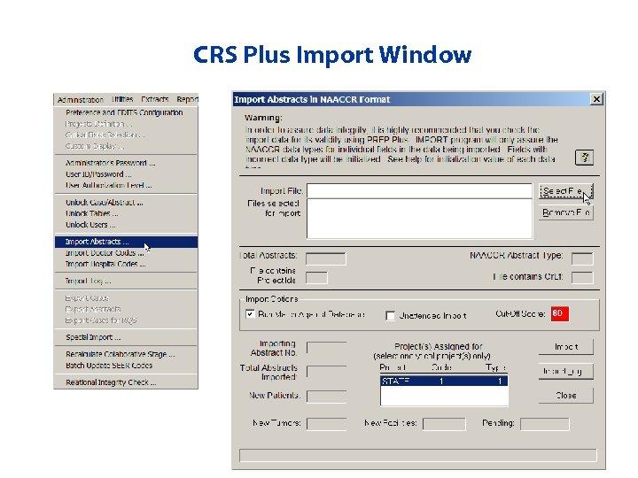 CRS Plus Import Window