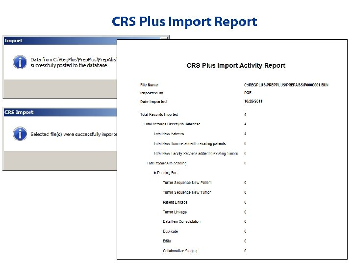 CRS Plus Import Report