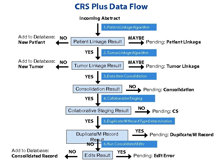 CRS Plus Data Flow Incoming Abstract 1. Patient Linkage Algorithm Add to Database: NO