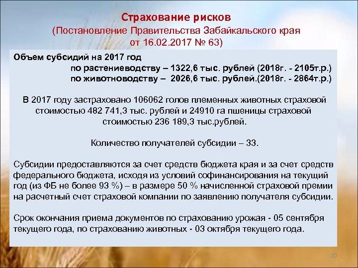 Страхование рисков (Постановление Правительства Забайкальского края от 16. 02. 2017 № 63) Объем субсидий
