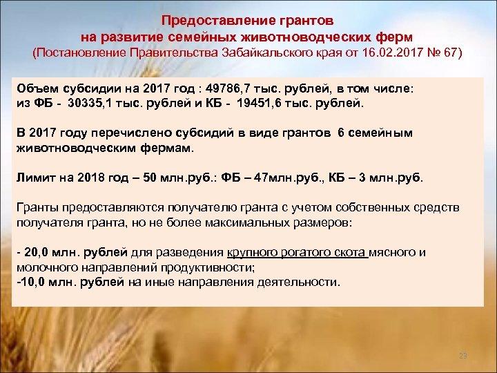 Предоставление грантов на развитие семейных животноводческих ферм (Постановление Правительства Забайкальского края от 16. 02.