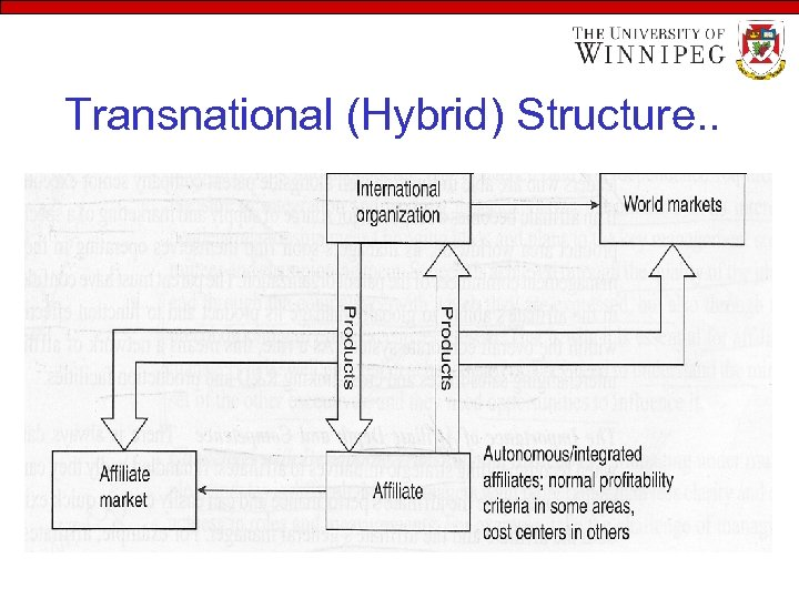 Transnational (Hybrid) Structure. .
