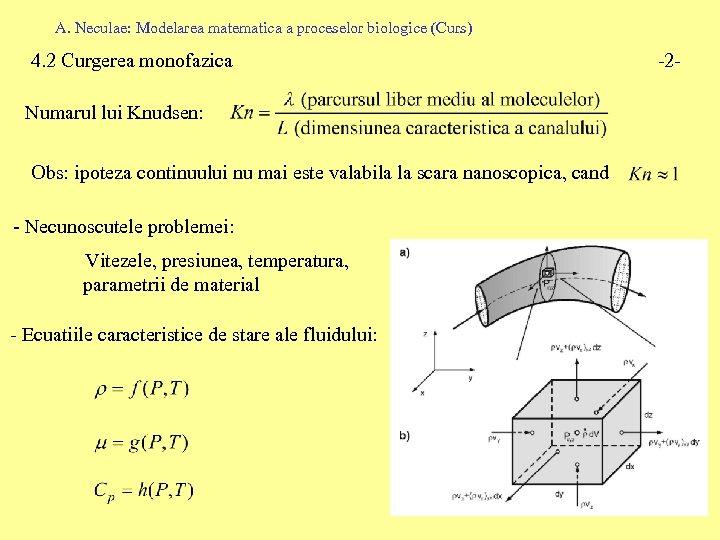 A. Neculae: Modelarea matematica a proceselor biologice (Curs) 4. 2 Curgerea monofazica Numarul lui