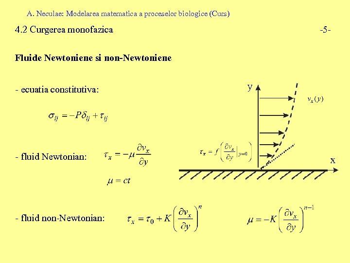 A. Neculae: Modelarea matematica a proceselor biologice (Curs) 4. 2 Curgerea monofazica Fluide Newtoniene
