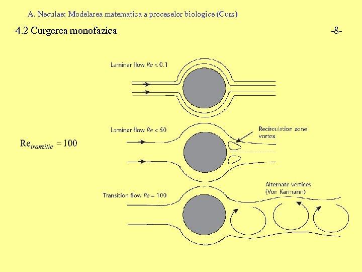 A. Neculae: Modelarea matematica a proceselor biologice (Curs) 4. 2 Curgerea monofazica -8 -