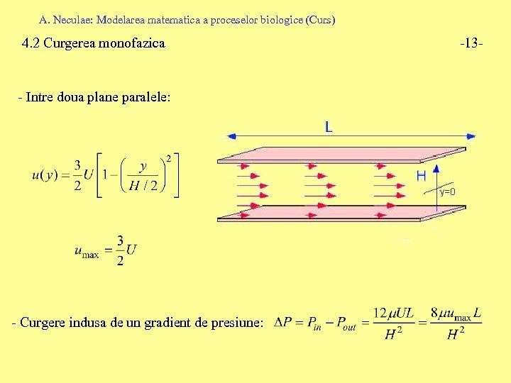 A. Neculae: Modelarea matematica a proceselor biologice (Curs) 4. 2 Curgerea monofazica - Intre