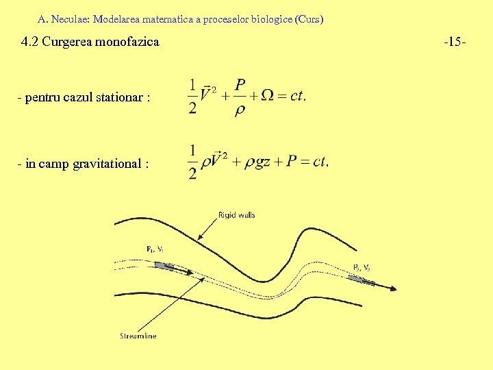 A. Neculae: Modelarea matematica a proceselor biologice (Curs) 4. 2 Curgerea monofazica - pentru