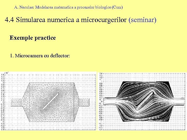 A. Neculae: Modelarea matematica a proceselor biologice (Curs) 4. 4 Simularea numerica a microcurgerilor