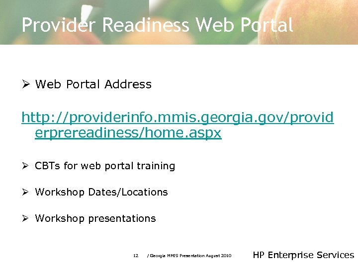 Provider Readiness Web Portal Ø Web Portal Address http: //providerinfo. mmis. georgia. gov/provid erprereadiness/home.
